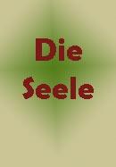 seele4